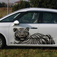 aerograf airbrush white tiger citroen